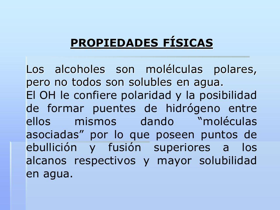 PROPIEDADES FÍSICAS Los alcoholes son molélculas polares, pero no todos son solubles en agua. El OH le confiere polaridad y la posibilidad de formar p