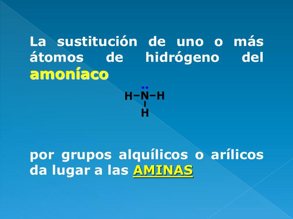 PUENTES DE HIDRÓGENO INTERMOLECULARES EN LAS AMINAS