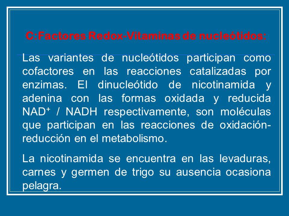 Las variantes de nucleótidos participan como cofactores en las reacciones catalizadas por enzimas. El dinucleótido de nicotinamida y adenina con las f