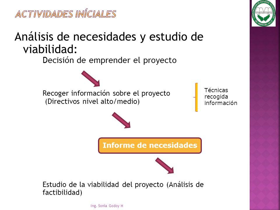 Análisis de necesidades y estudio de viabilidad: Decisión de emprender el proyecto Recoger información sobre el proyecto (Directivos nivel alto/medio)