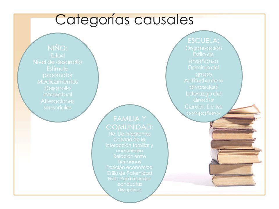 Categorías causales NIÑO: Edad Nivel de desarrollo Estimulo psicomotor Medicamentos Desarrollo intelectual Alteraciones sensoriales FAMILIA Y COMUNIDA