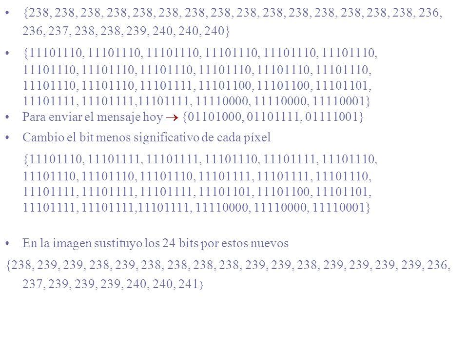 Si lo escondo, ¿lo encuentras? {238, 238, 238, 238, 238, 238, 238, 238, 238, 238, 238, 238, 238, 238, 238, 236, 236, 237, 238, 238, 239, 240, 240, 240