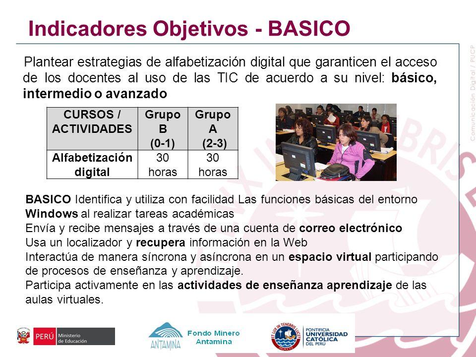 Plantear estrategias de alfabetización digital que garanticen el acceso de los docentes al uso de las TIC de acuerdo a su nivel: básico, intermedio o