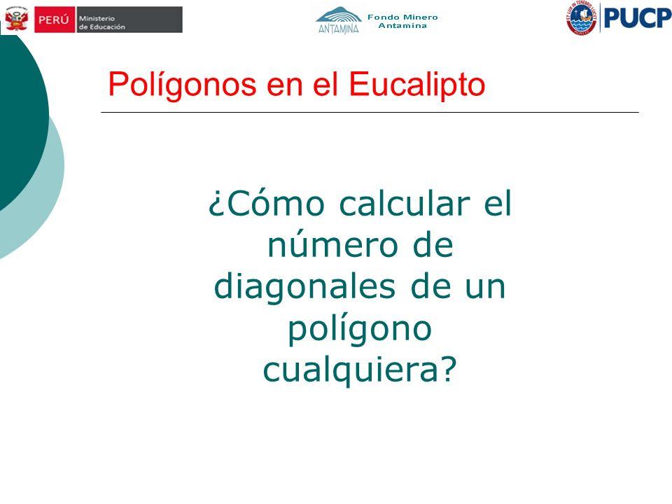Polígonos en el Eucalipto ¿Cómo calcular el número de diagonales de un polígono cualquiera?