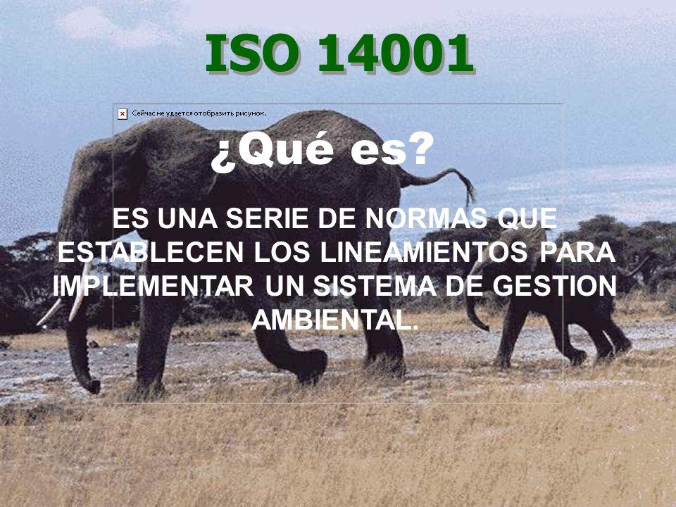 ES UNA SERIE DE NORMAS QUE ESTABLECEN LOS LINEAMIENTOS PARA IMPLEMENTAR UN SISTEMA DE GESTION AMBIENTAL. ISO 14001 ¿Qué es?