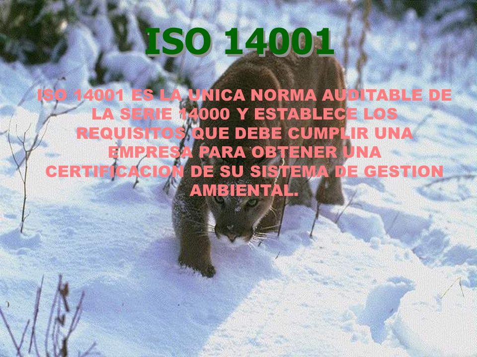 ISO 14001 ES LA UNICA NORMA AUDITABLE DE LA SERIE 14000 Y ESTABLECE LOS REQUISITOS QUE DEBE CUMPLIR UNA EMPRESA PARA OBTENER UNA CERTIFICACION DE SU S