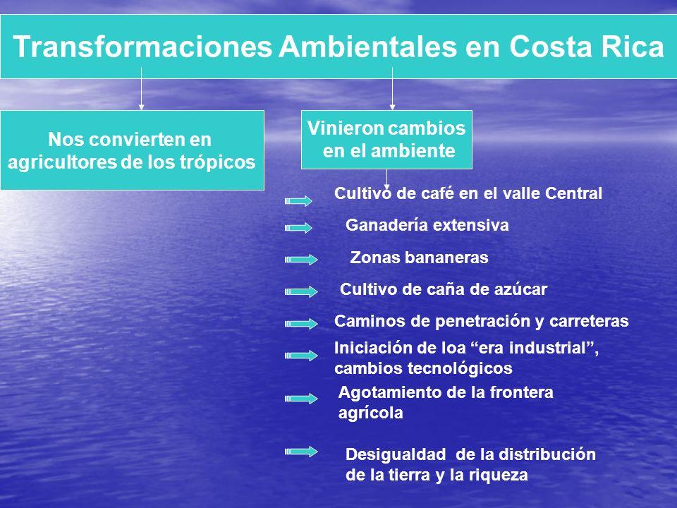 UNA VISION AMBIENTAL DE COSTA RICA Costa Rica tiene 660.000 Km2 de aguas patrimoniales, lo que representa unas 12 veces del territorio. Puente Biológi