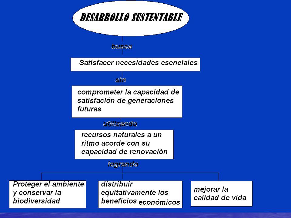 Cumbre ecológica de brasil 92 Agenda 21 Agenda 21 Convención sobre la diversidad biológica y unos principios forestales. Convención sobre la diversida