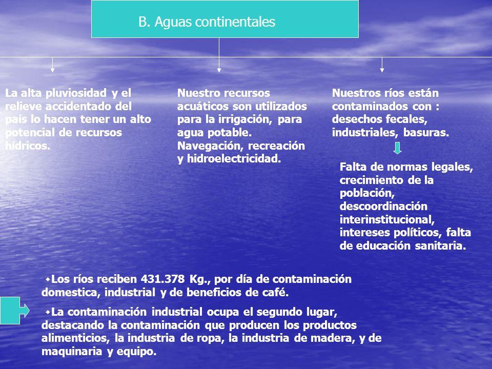 Sedimentación: las zonas costeras se ven afectadas por el arrastre de sedimentos que hacen los ríos debido a la deforestación que se produce en los mi