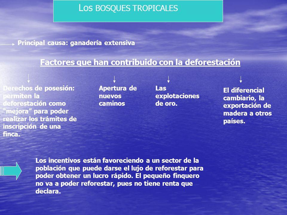 B. Aguas continentales La alta pluviosidad y el relieve accidentado del país lo hacen tener un alto potencial de recursos hídricos. Nuestro recursos a