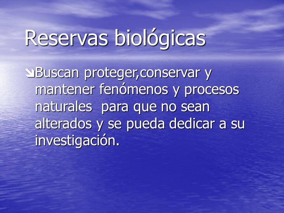 Parques nacionales Parque nacional Rincón de la Vieja Parque nacional Rincón de la Vieja Parque nacional Braulio Carrillo Parque nacional Braulio Carr