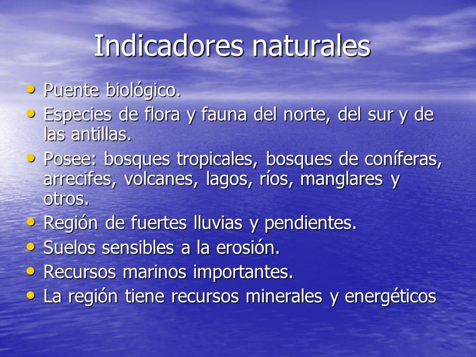 Indicadores naturales Puente biológico.Puente biológico.