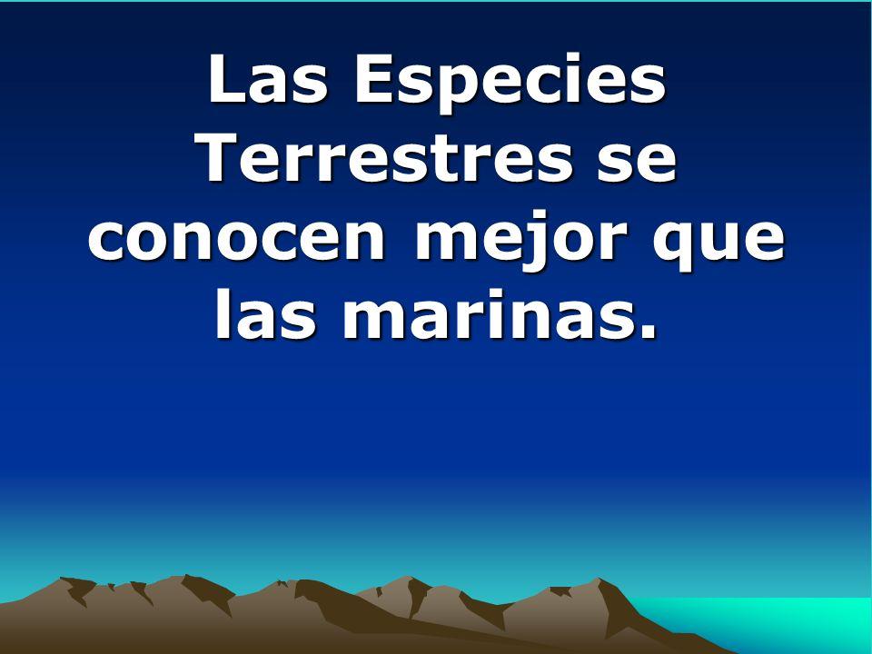 Las Especies Terrestres se conocen mejor que las marinas. Las Especies Terrestres se conocen mejor que las marinas.