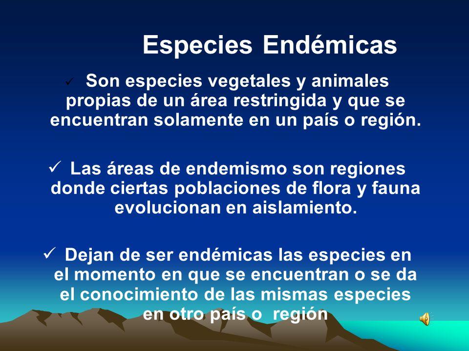 Especies Endémicas Son especies vegetales y animales propias de un área restringida y que se encuentran solamente en un país o región. Las áreas de en