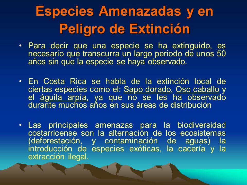 Especies Amenazadas y en Peligro de Extinción Para decir que una especie se ha extinguido, es necesario que transcurra un largo periodo de unos 50 año