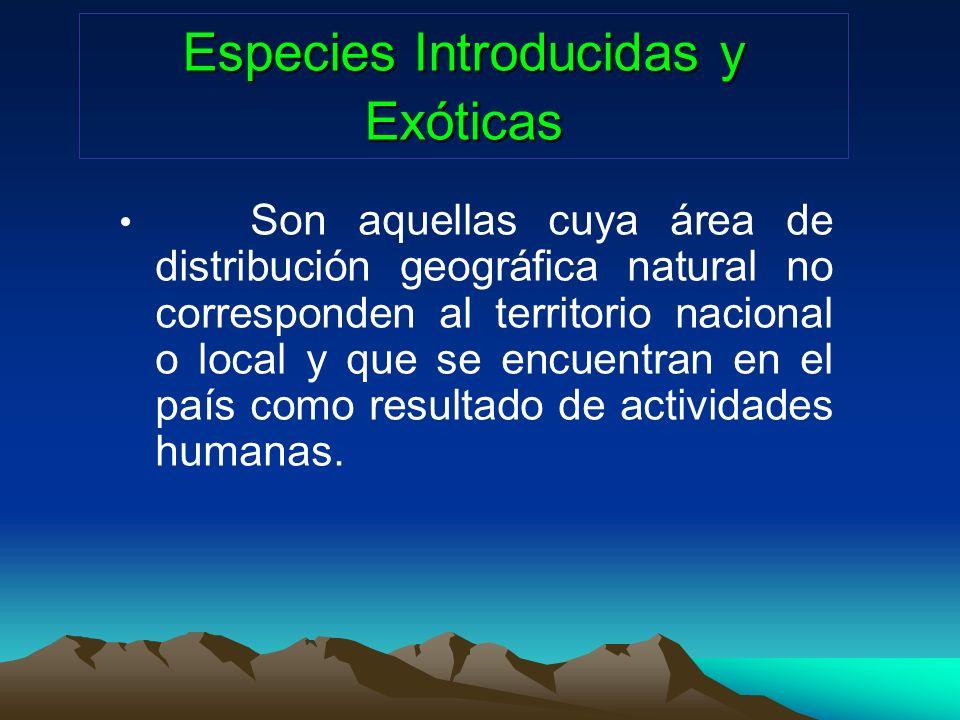 Especies Introducidas y Exóticas Son aquellas cuya área de distribución geográfica natural no corresponden al territorio nacional o local y que se enc