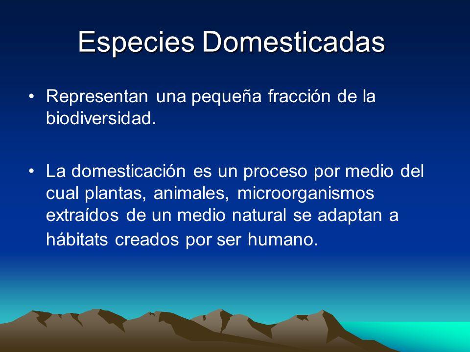 Especies Domesticadas Representan una pequeña fracción de la biodiversidad. La domesticación es un proceso por medio del cual plantas, animales, micro