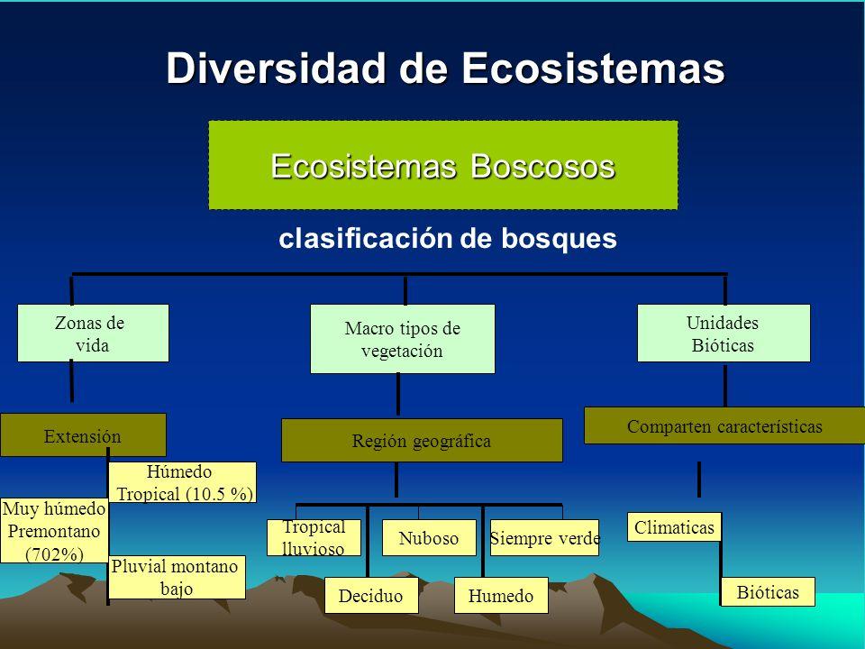 Diversidad de Ecosistemas Ecosistemas Boscosos Zonas de vida clasificación de bosques Macro tipos de vegetación Extensión Húmedo Tropical (10.5 %) Muy