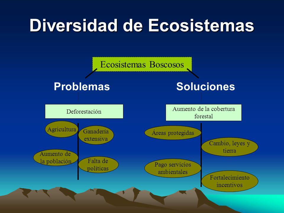 Diversidad de Ecosistemas ProblemasSoluciones Deforestación Ecosistemas Boscosos Ganadería extensiva Falta de políticas Aumento de la población Agricu