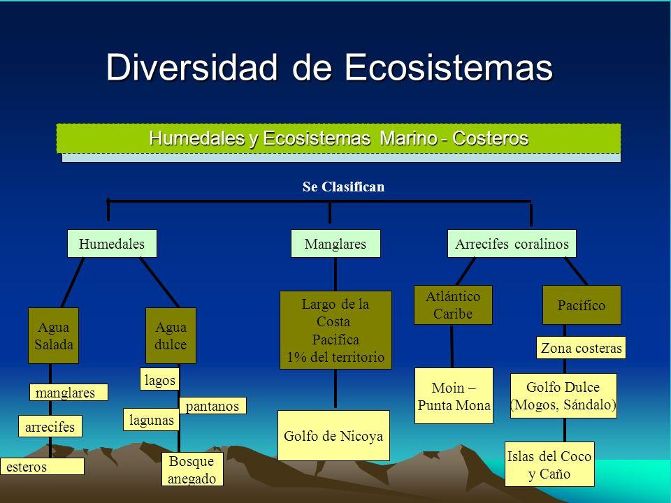 Diversidad de Ecosistemas Humedales y Ecosistemas Marino - Costeros Se Clasifican Humedales Agua Salada Agua dulce manglares arrecifes esteros pantano