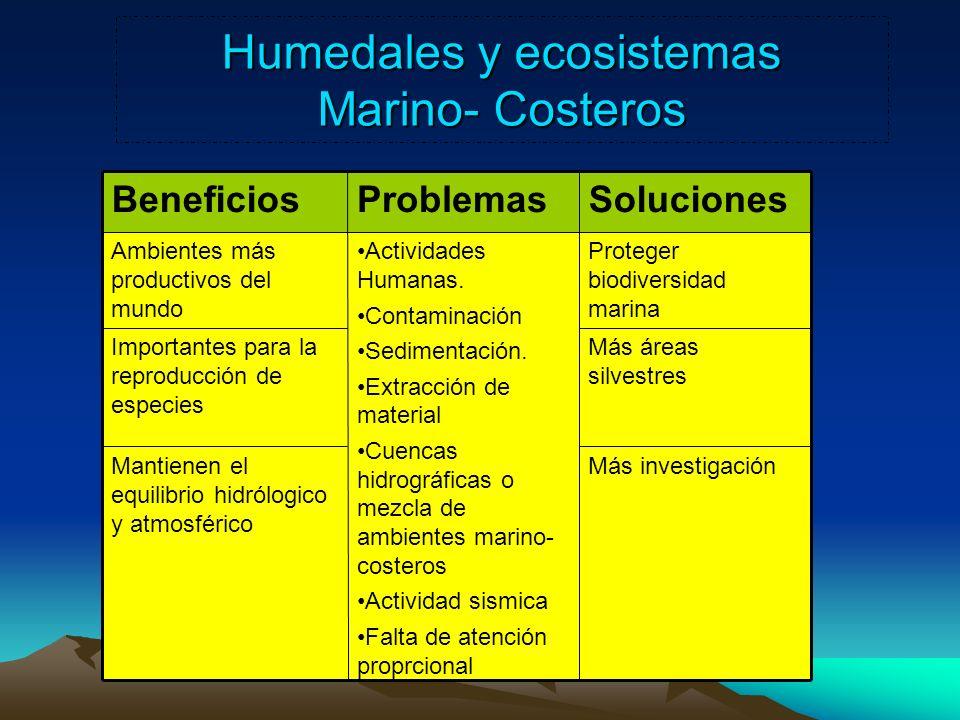 Humedales y ecosistemas Marino- Costeros Más investigaciónMantienen el equilibrio hidrólogico y atmosférico Más áreas silvestres Importantes para la r