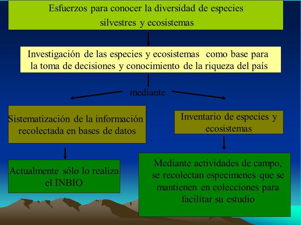 mediante Esfuerzos para conocer la diversidad de especies silvestres y ecosistemas Investigación de las especies y ecosistemas como base para la toma