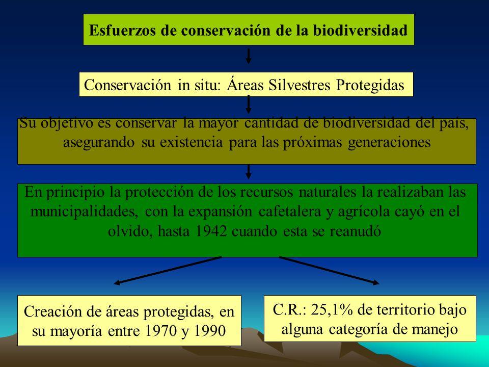 Creación de áreas protegidas, en su mayoría entre 1970 y 1990 C.R.: 25,1% de territorio bajo alguna categoría de manejo Esfuerzos de conservación de l