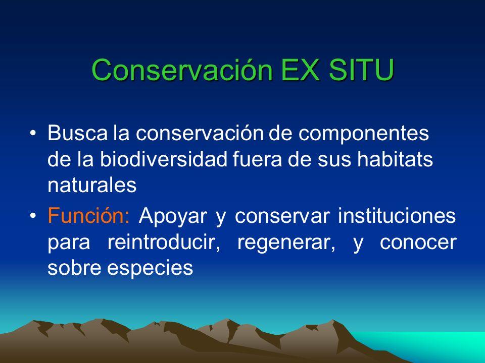 Conservación EX SITU Busca la conservación de componentes de la biodiversidad fuera de sus habitats naturales Función: Apoyar y conservar institucione