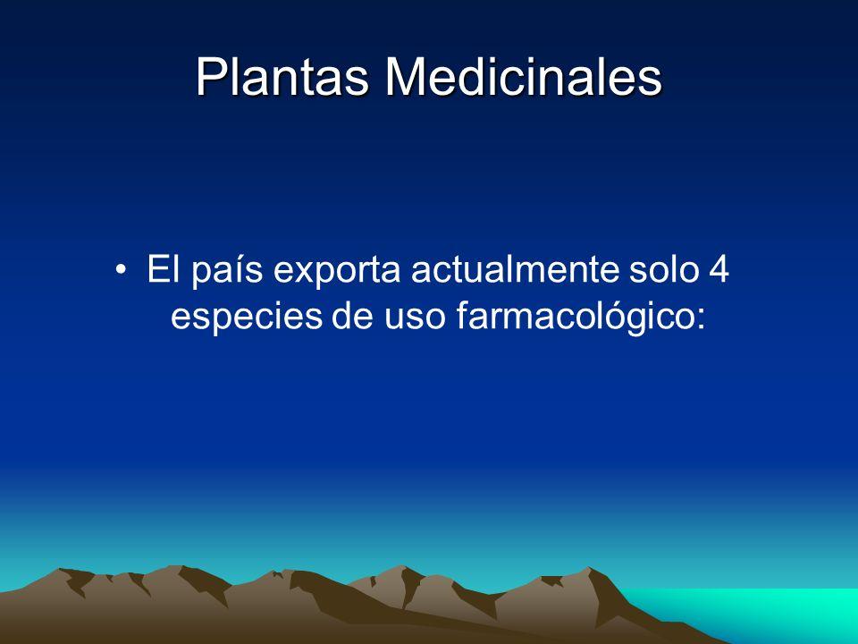 Plantas Medicinales El país exporta actualmente solo 4 especies de uso farmacológico: