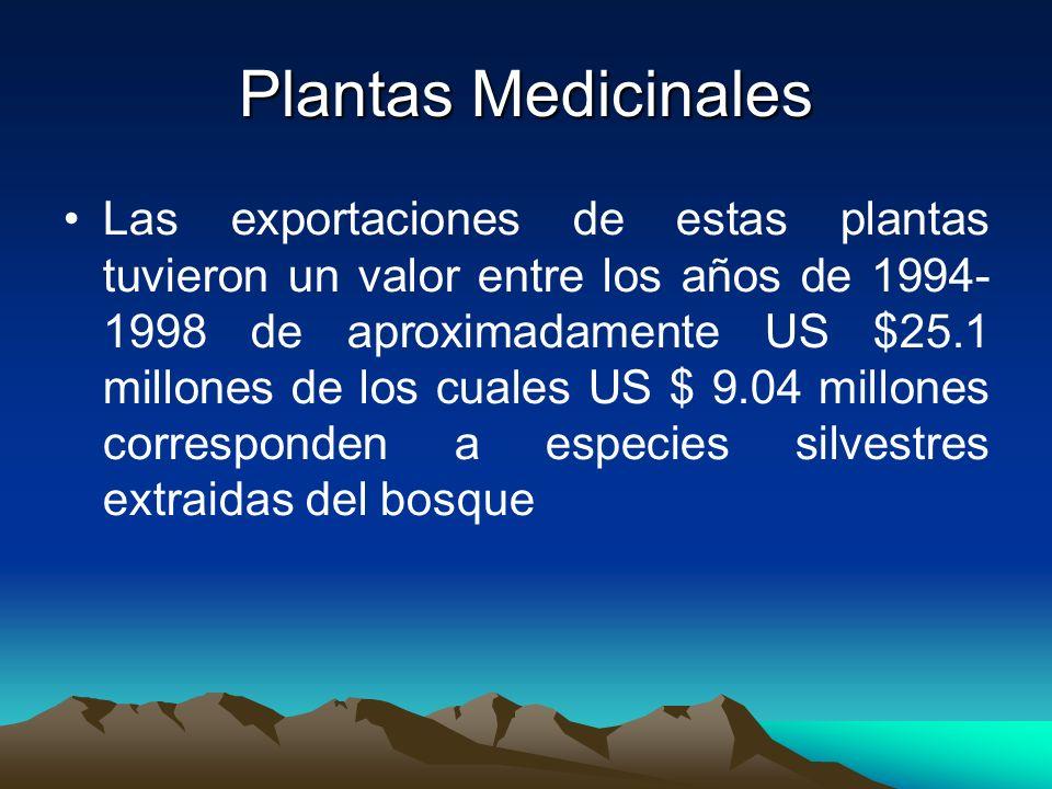 Plantas Medicinales Las exportaciones de estas plantas tuvieron un valor entre los años de 1994- 1998 de aproximadamente US $25.1 millones de los cual