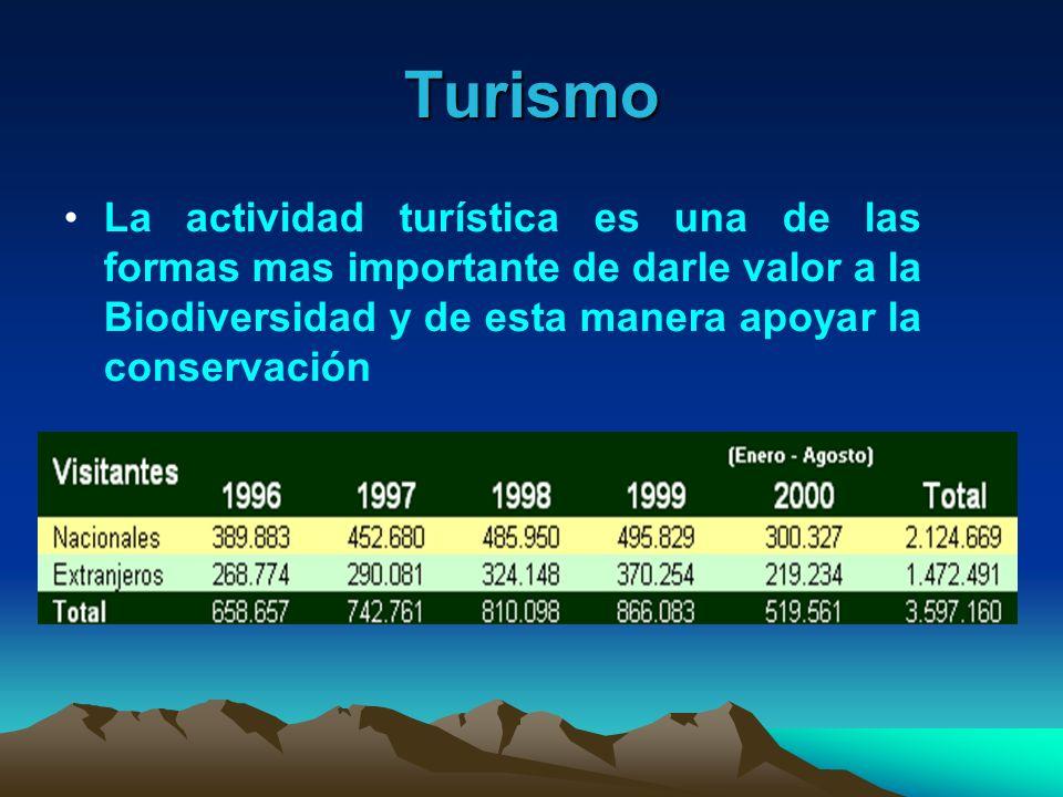 Turismo La actividad turística es una de las formas mas importante de darle valor a la Biodiversidad y de esta manera apoyar la conservación