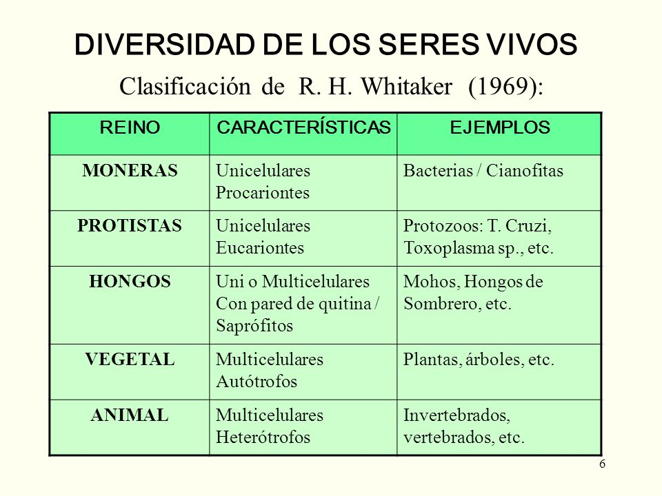 6 DIVERSIDAD DE LOS SERES VIVOS Clasificación de R. H. Whitaker (1969): REINOCARACTERÍSTICASEJEMPLOS MONERASUnicelulares Procariontes Bacterias / Cian
