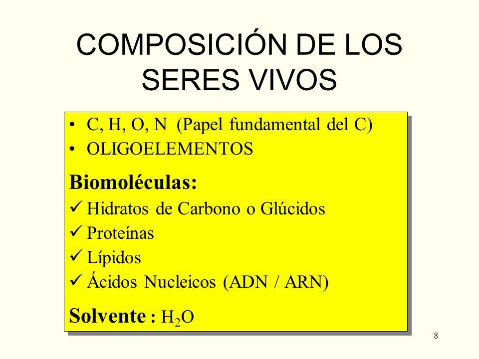 8 COMPOSICIÓN DE LOS SERES VIVOS C, H, O, N (Papel fundamental del C) OLIGOELEMENTOS Biomoléculas: Hidratos de Carbono o Glúcidos Proteínas Lípidos Ác