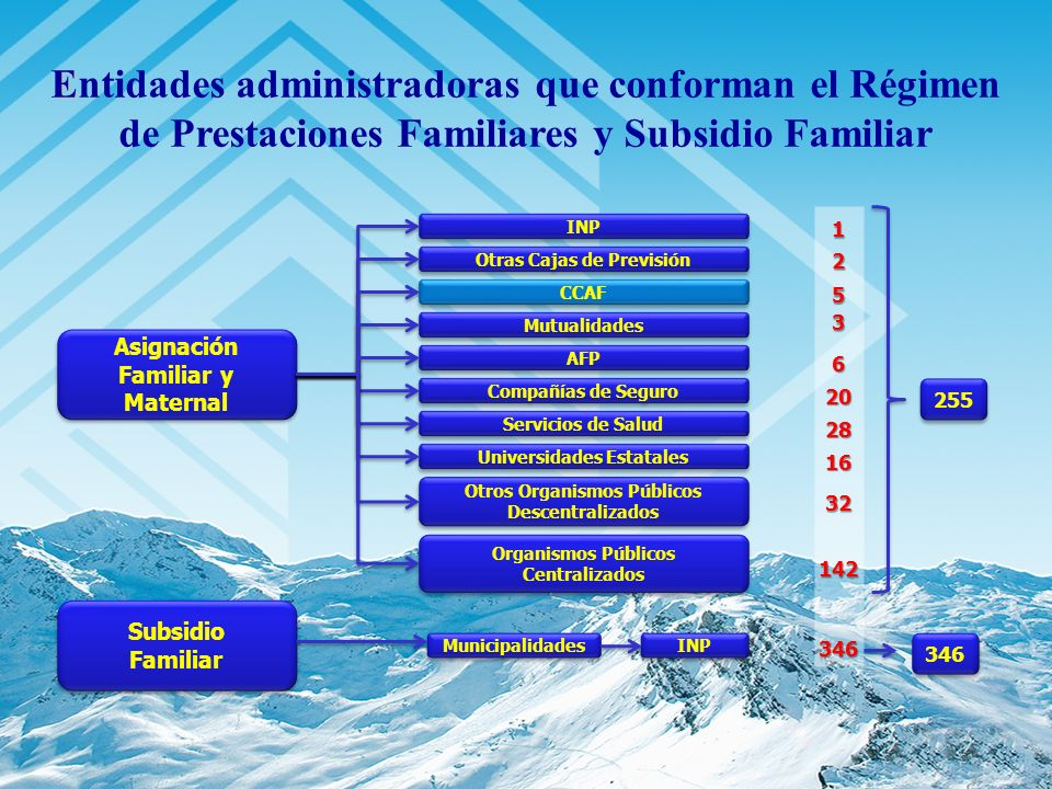 Asignación Familiar y Maternal Subsidio Familiar Subsidio Familiar INP Otras Cajas de Previsión CCAF Mutualidades AFP Compañías de Seguro Servicios de