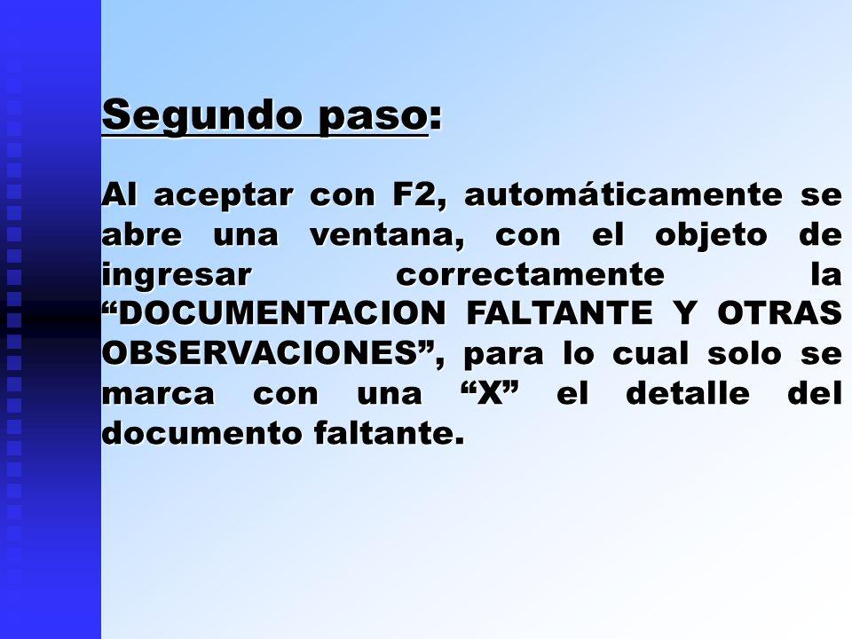 Segundo paso: Al aceptar con F2, automáticamente se abre una ventana, con el objeto de ingresar correctamente la DOCUMENTACION FALTANTE Y OTRAS OBSERV