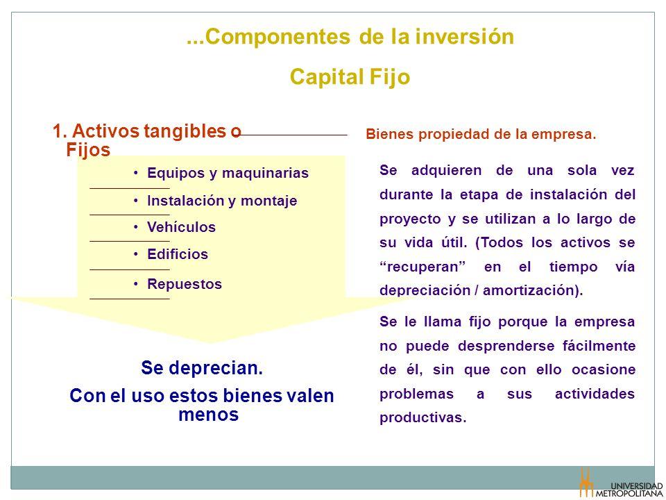 ...Componentes de la inversión Capital Fijo Bienes propiedad de la empresa. Se adquieren de una sola vez durante la etapa de instalación del proyecto