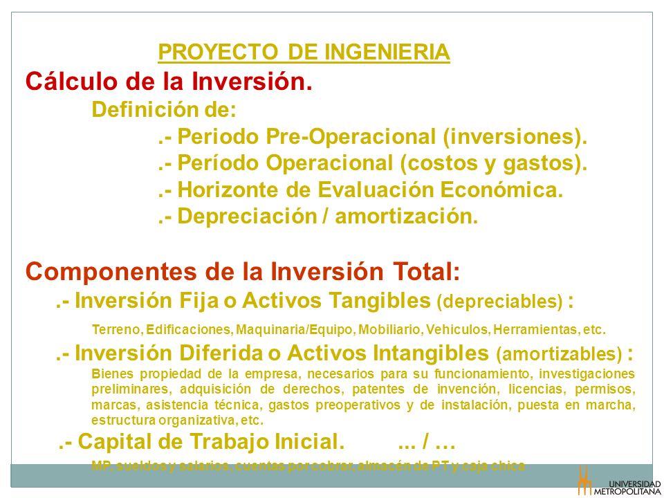 PROYECTO DE INGENIERIA Cálculo de la Inversión. Definición de:.- Periodo Pre-Operacional (inversiones)..- Período Operacional (costos y gastos)..- Hor