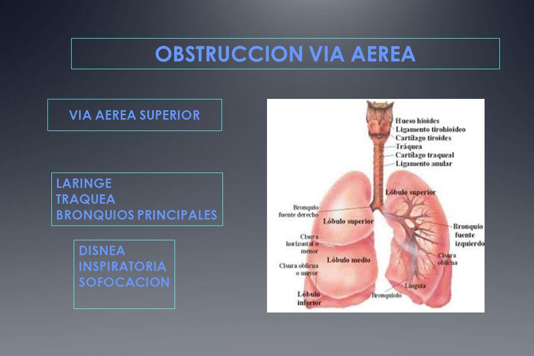 OBSTRUCCION VIA AEREA VIA AEREA SUPERIOR LARINGE TRAQUEA BRONQUIOS PRINCIPALES DISNEA INSPIRATORIA SOFOCACION