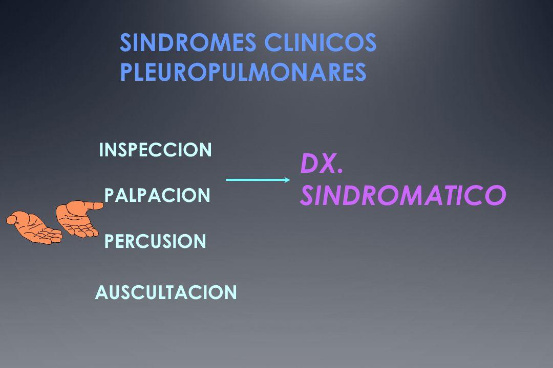SINDROMES CLINICOS PLEUROPULMONARES INSPECCION PALPACION PERCUSION AUSCULTACION DX. SINDROMATICO