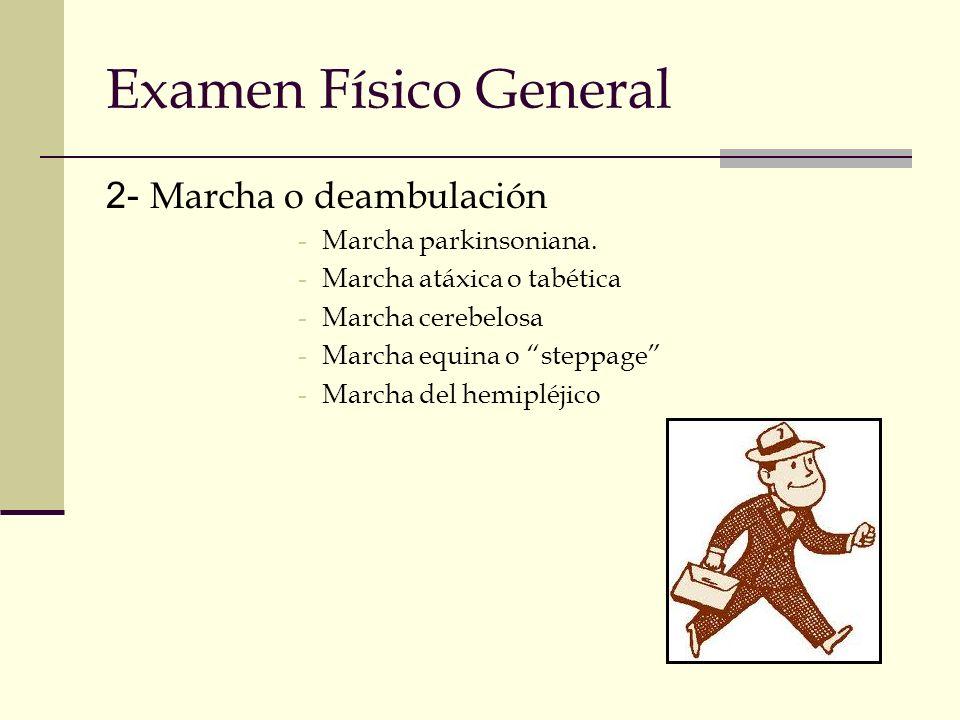 Examen Físico General 2- Marcha o deambulación -Marcha parkinsoniana. -Marcha atáxica o tabética -Marcha cerebelosa -Marcha equina o steppage -Marcha