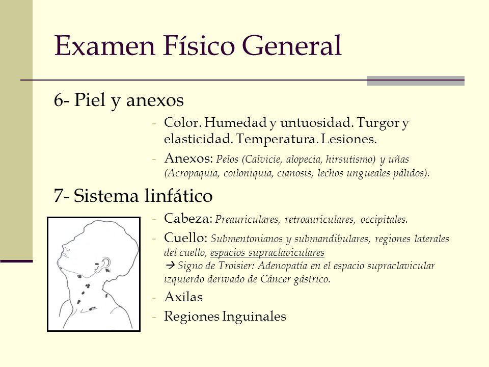Examen Físico General 6- Piel y anexos -Color. Humedad y untuosidad. Turgor y elasticidad. Temperatura. Lesiones. -Anexos: Pelos (Calvicie, alopecia,