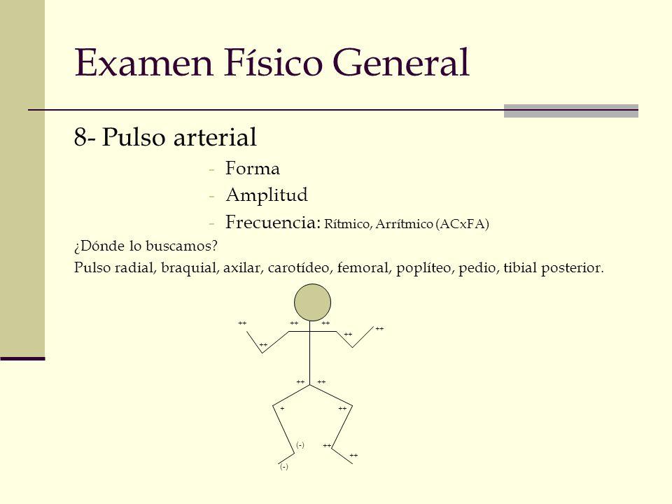 Examen Físico General 8- Pulso arterial -Forma -Amplitud -Frecuencia: Rítmico, Arrítmico (ACxFA) ¿Dónde lo buscamos? Pulso radial, braquial, axilar, c