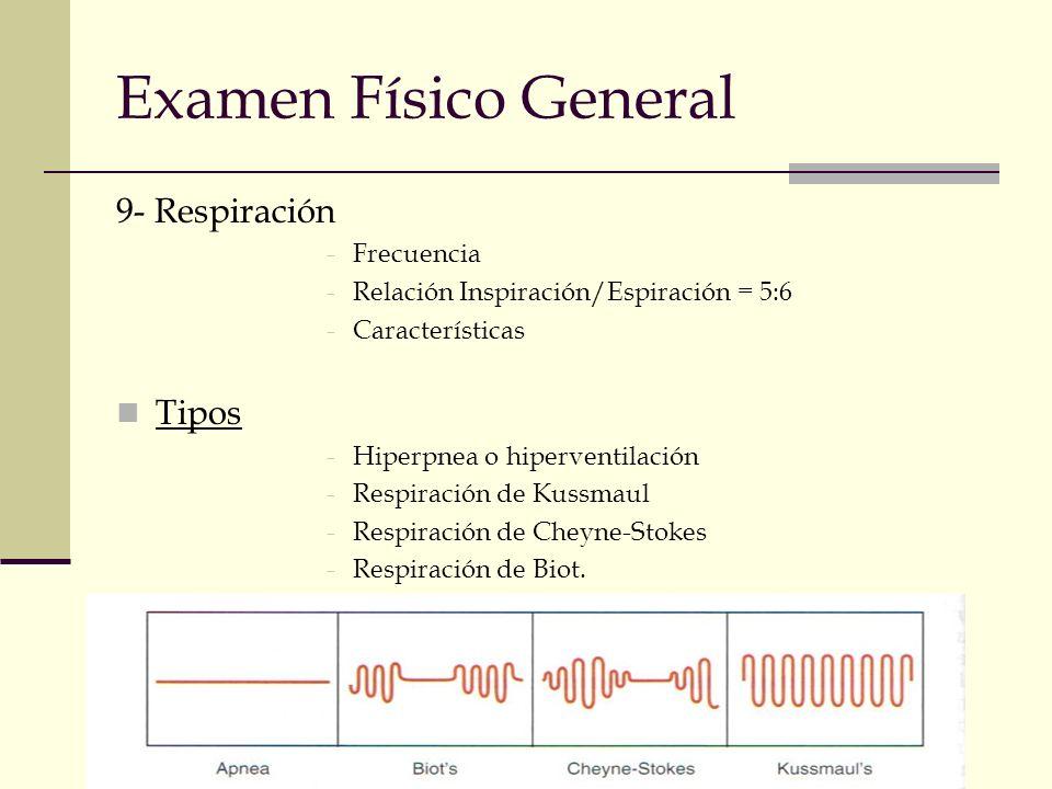 Examen Físico General 9- Respiración -Frecuencia -Relación Inspiración/Espiración = 5:6 -Características Tipos -Hiperpnea o hiperventilación -Respirac