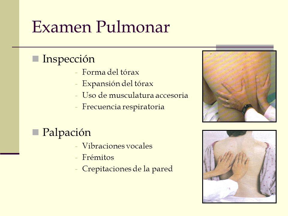 Examen Pulmonar Inspección -Forma del tórax -Expansión del tórax -Uso de musculatura accesoria -Frecuencia respiratoria Palpación -Vibraciones vocales