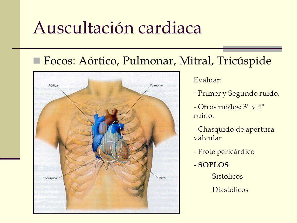Auscultación cardiaca Focos: Aórtico, Pulmonar, Mitral, Tricúspide Evaluar: - Primer y Segundo ruido. - Otros ruidos: 3° y 4° ruido. - Chasquido de ap