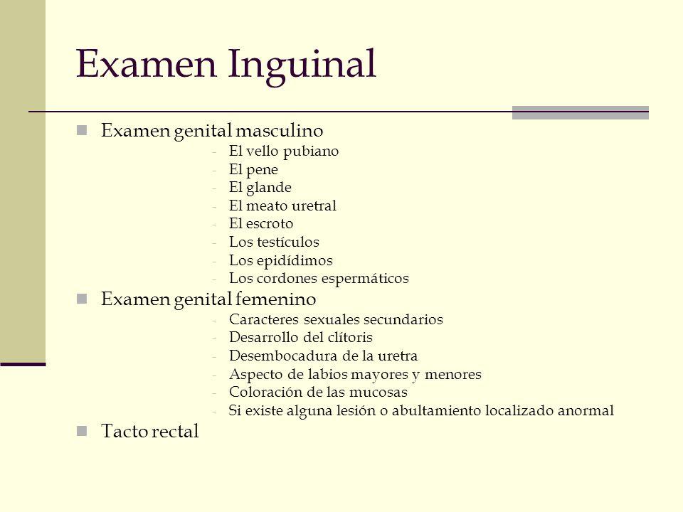 Examen Inguinal Examen genital masculino -El vello pubiano -El pene -El glande -El meato uretral -El escroto -Los testículos -Los epidídimos -Los cord