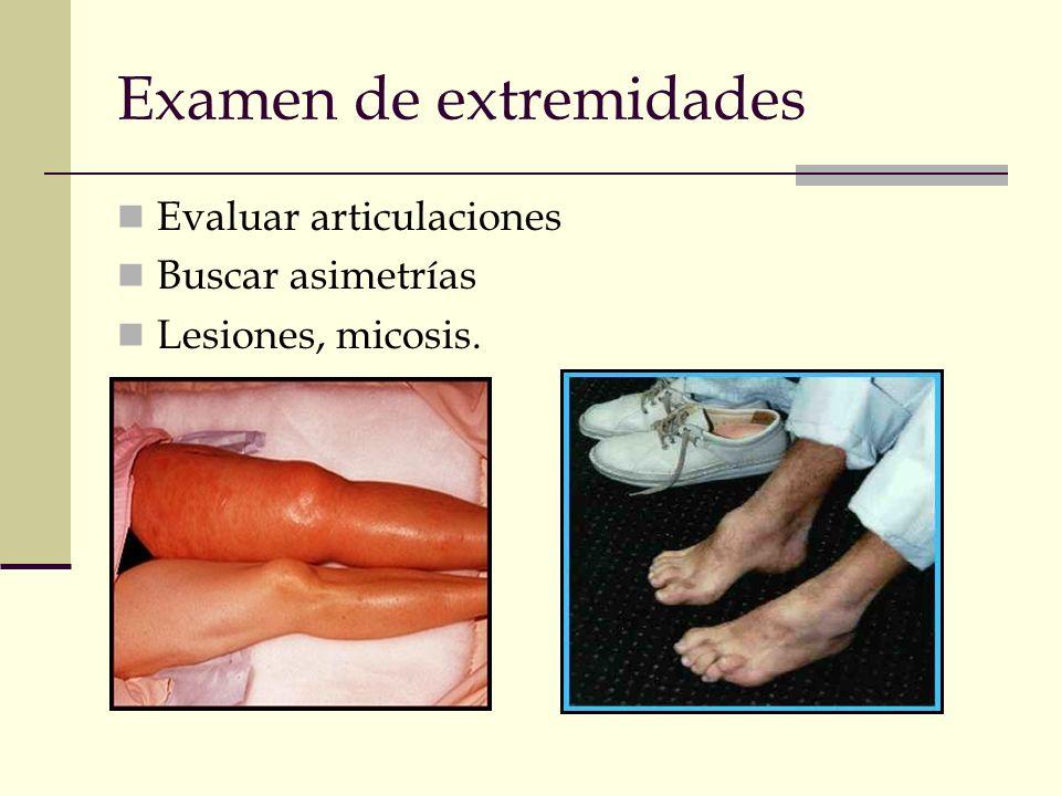 Examen de extremidades Evaluar articulaciones Buscar asimetrías Lesiones, micosis.