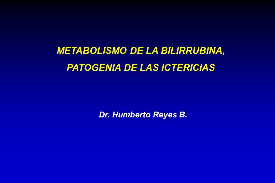 Dr. Humberto Reyes B. METABOLISMO DE LA BILIRRUBINA, PATOGENIA DE LAS ICTERICIAS