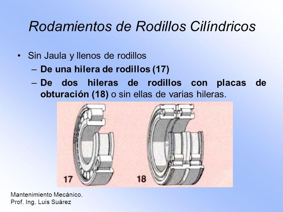 Rodamientos de Rodillos Cilíndricos Sin Jaula y llenos de rodillos –De una hilera de rodillos (17) –De dos hileras de rodillos con placas de obturació