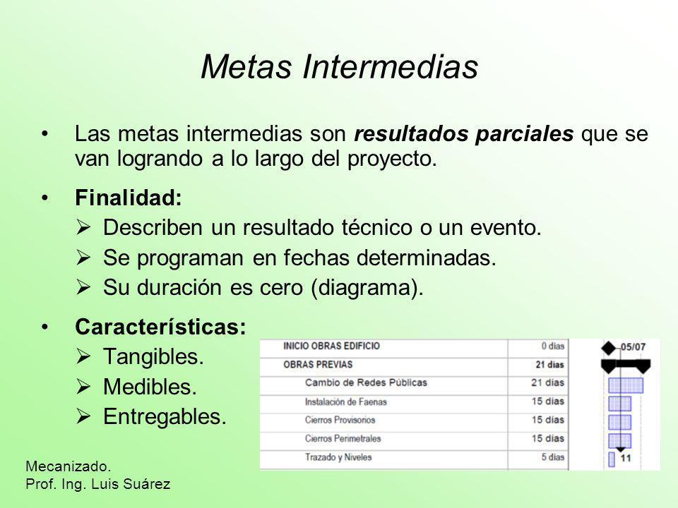 Metas Intermedias Las metas intermedias son resultados parciales que se van logrando a lo largo del proyecto. Finalidad: Describen un resultado técnic